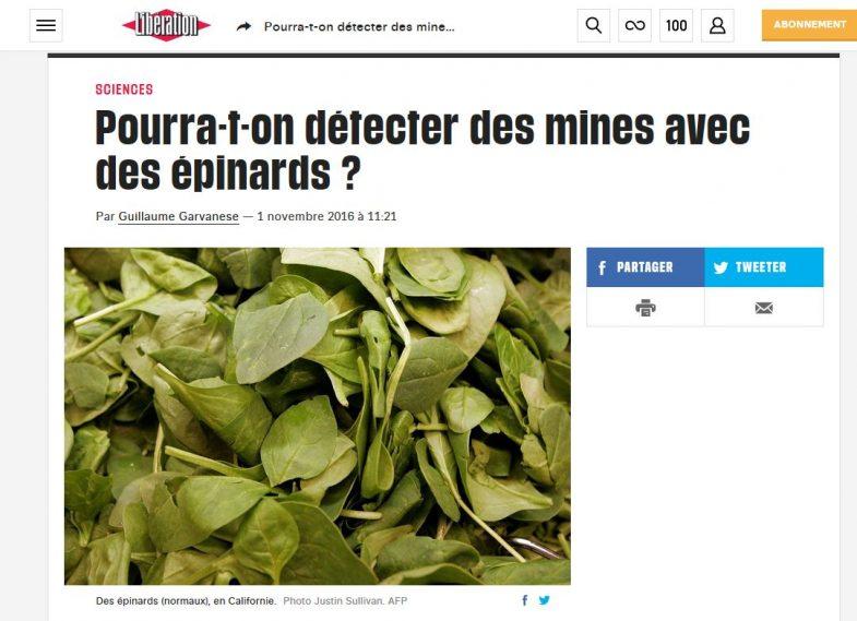 Détecter des mines avec des épinards - Libération